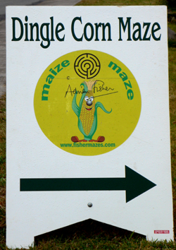 Dingle Corn Maze