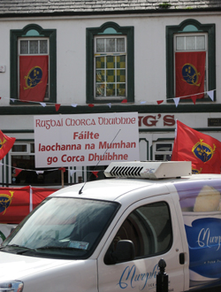 Munster Flags