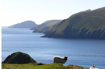 Blasket Islands