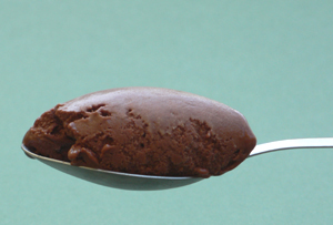 Chocolate Sorbet on Spoon
