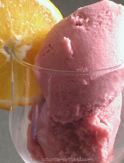 Mulled Wine Sorbet Closeup