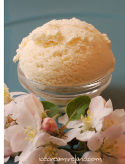 Manuka Honey Ice Cream