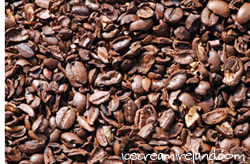 Crushed Coffee Beans