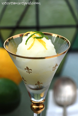 Lemon Lime Sorbet