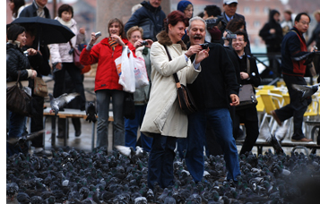 Pidgeons couple laughing